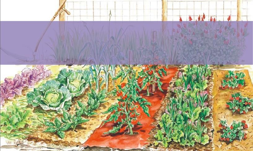 2015 Gardening Workshops